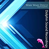 Wah Wah Disco (Original Mix)