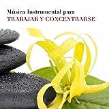 Música Instrumental para Trabajar y Concentrarse en la Oficina - Sonidos de la Naturaleza (Lluvia, Viento, Olas del Mar) juntos a Instrumentos Musicales Relajantes como Flauta de Pan, Piano, Ocarina