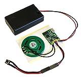 Talking Products - Módulo de chip de sonido MP3, 4 MB de memoria, con caja para batería AAA Ideal para maquetas y manualidades.