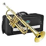 EastRock Gold Trompeta Sib Trompeta estándar de latón con estuche rígido, guantes, tela, boquilla 7C, instrumentos musicales para estudiantes principiantes o niños experimentados